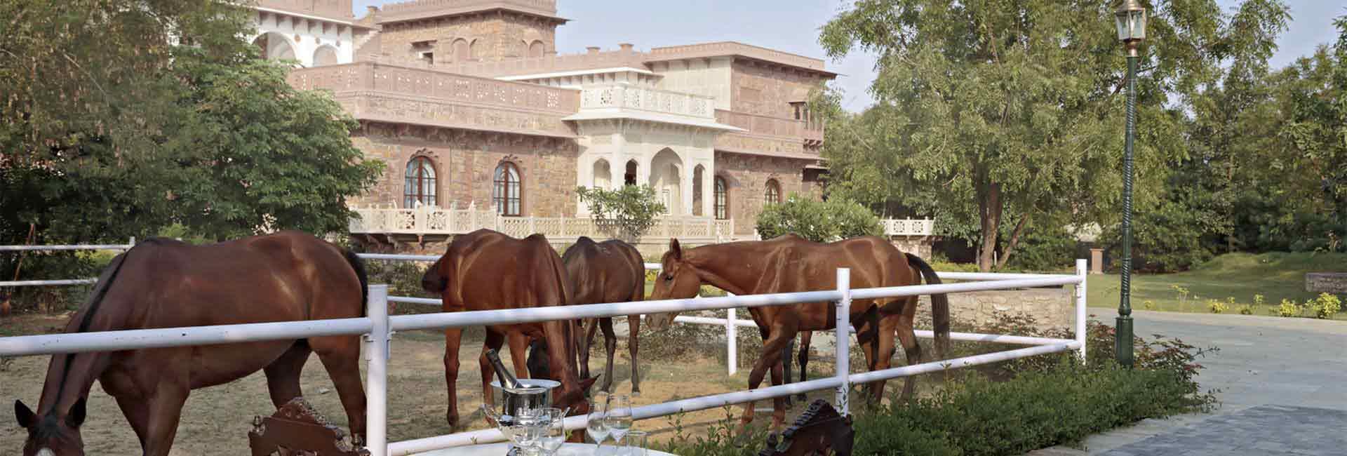 Holiday-Rental-in-Jaipur1